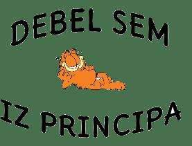 Skodelica – Debel sem iz principa
